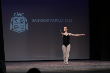 Sagrada Familia, 2018 (15)